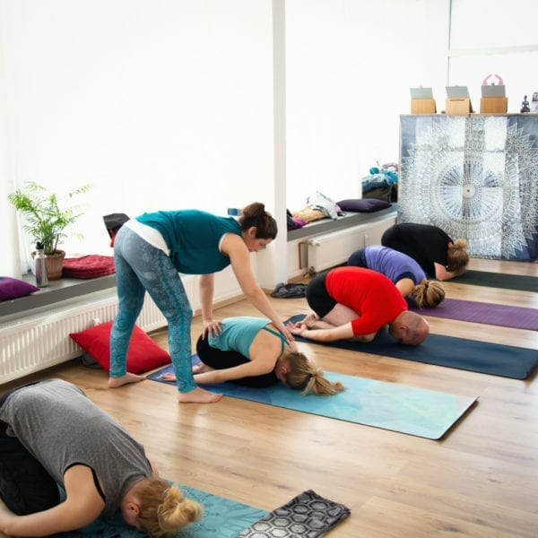Yoga Einsteiger Kompakt Kurs - Ausführliche Anleitung